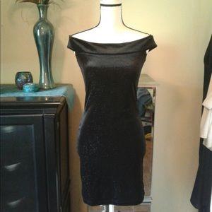 NWT Sparkle Stretch Velvet Dress